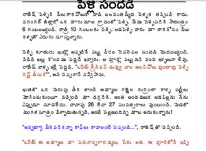 పెళ్లి సందడి Pelli Sandhadi Telugu PDF Sex Stories