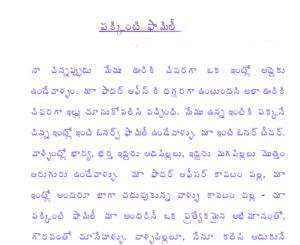 పకింటి ఫ్యామిలీ Pakkinti Family Telugu PDF Story
